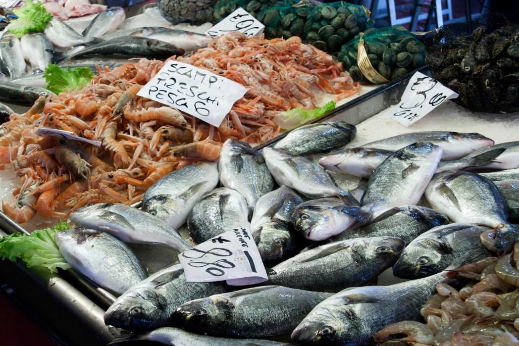 Zollbestimmungen bei der Einfuhr aus Drittländern: Fisch, Fleisch und sonstige tierische Produkte