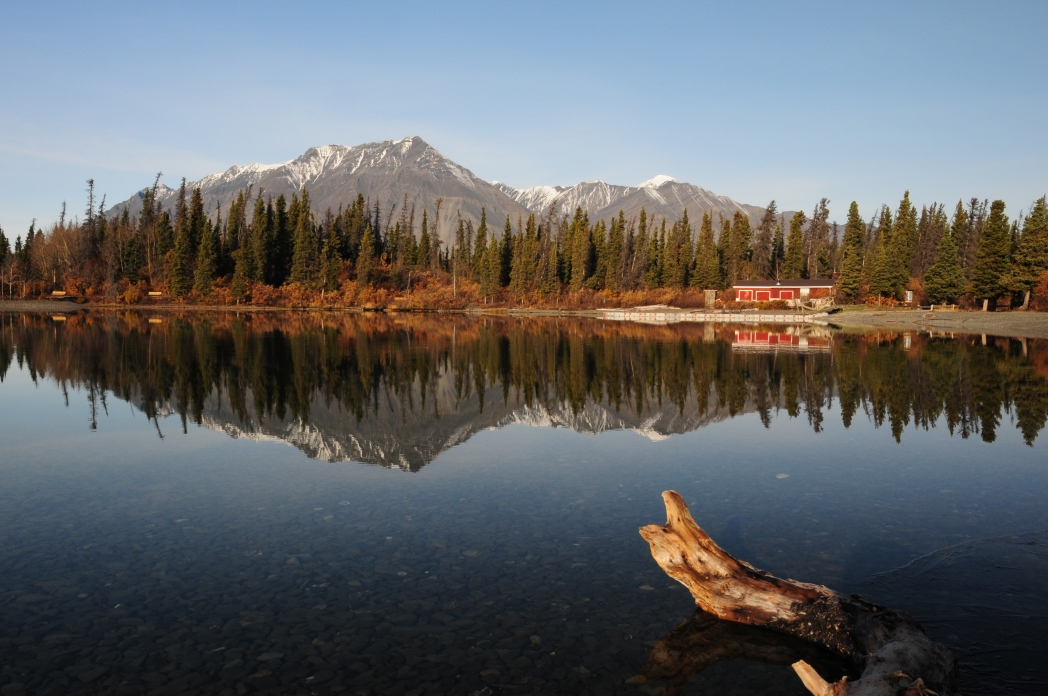 Herbst im Norden Kanadas: Yukon