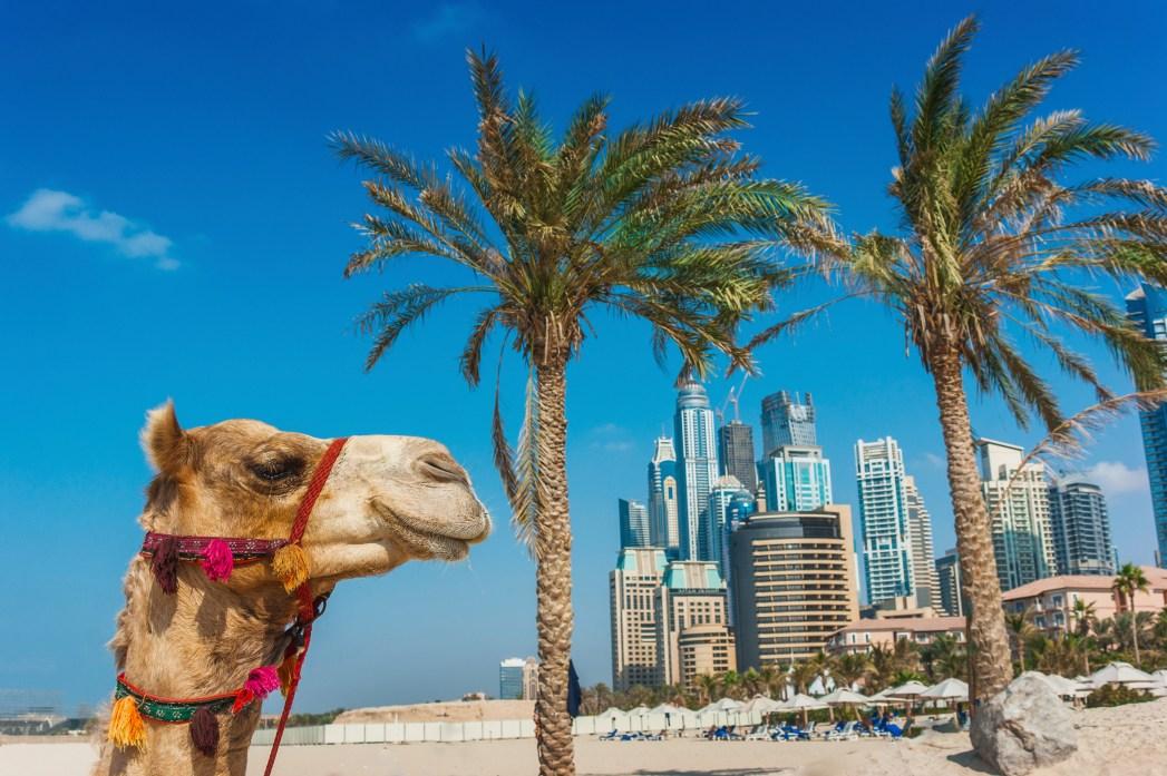 Top Reiseziele für März und April: Dubai, Vereinigte Arabische Emirate