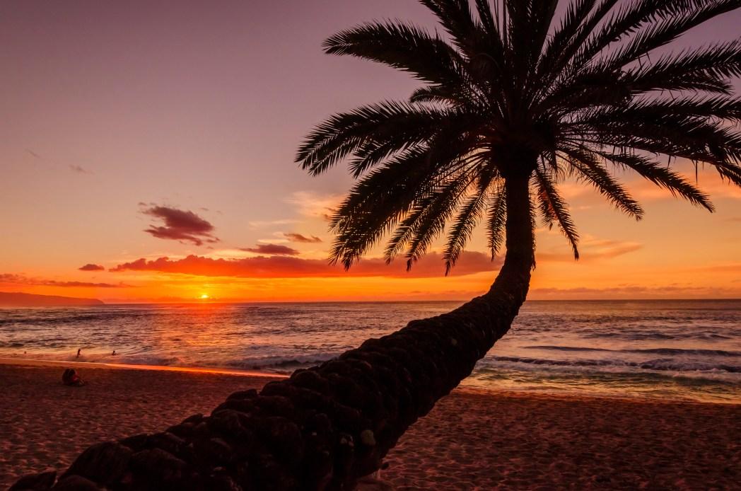 Die schönsten Strände der USA: North Shore – Oahu, Hawaii