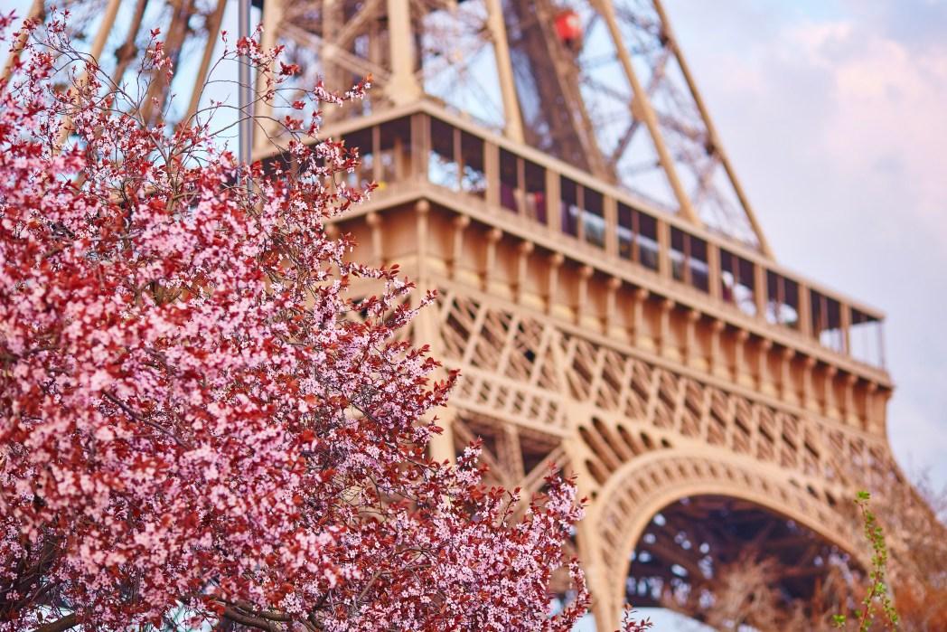 Working Holiday Europa, Paris