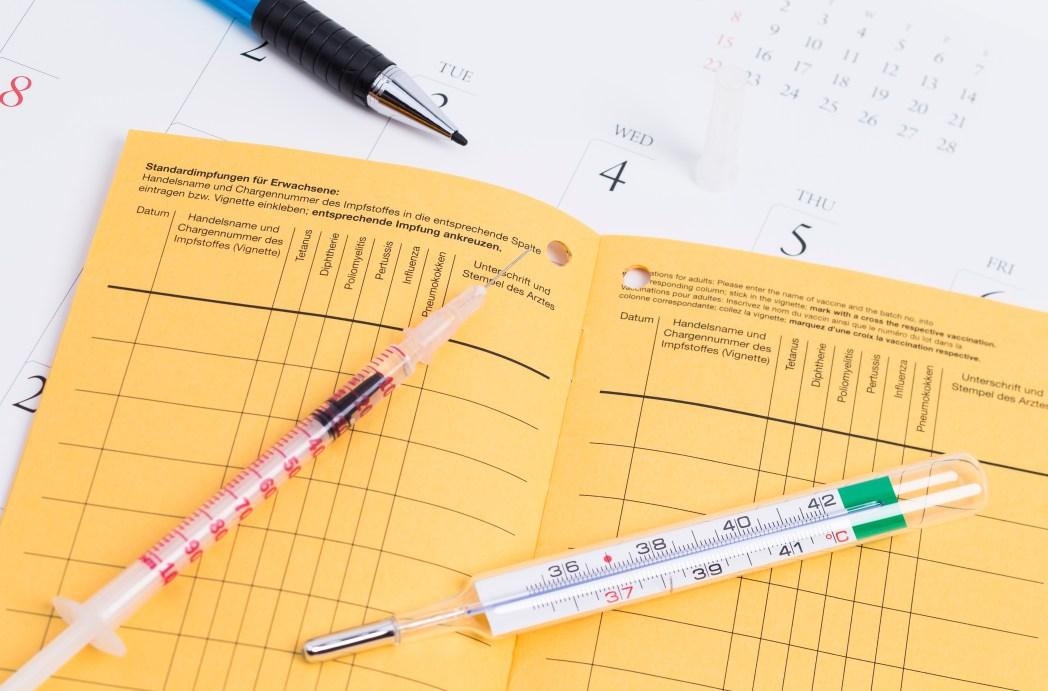 Impfausweis, Spritze, Fieberthermometer
