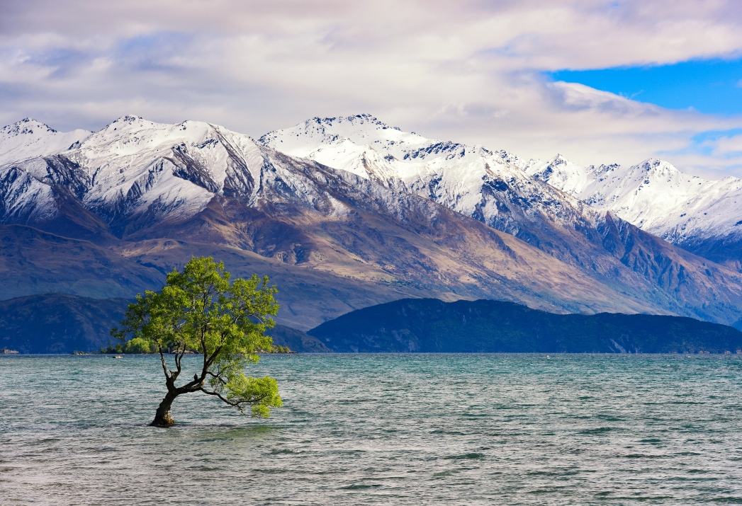 Die besten Road Trips durch Neuseeland: Wanaka, Neuseeland