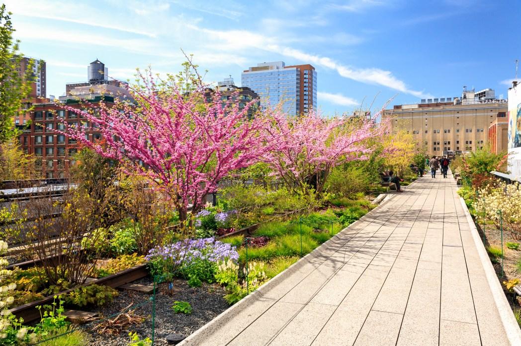Frühling Reise: New York, USA