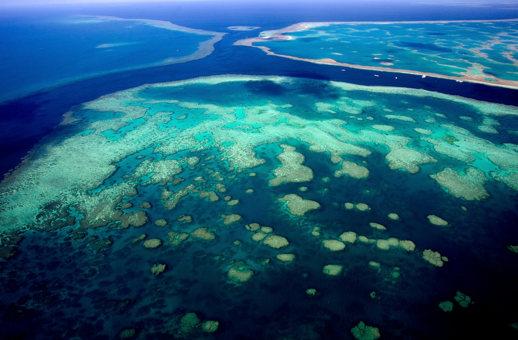 Australien Bilder: Great Barrier Reef