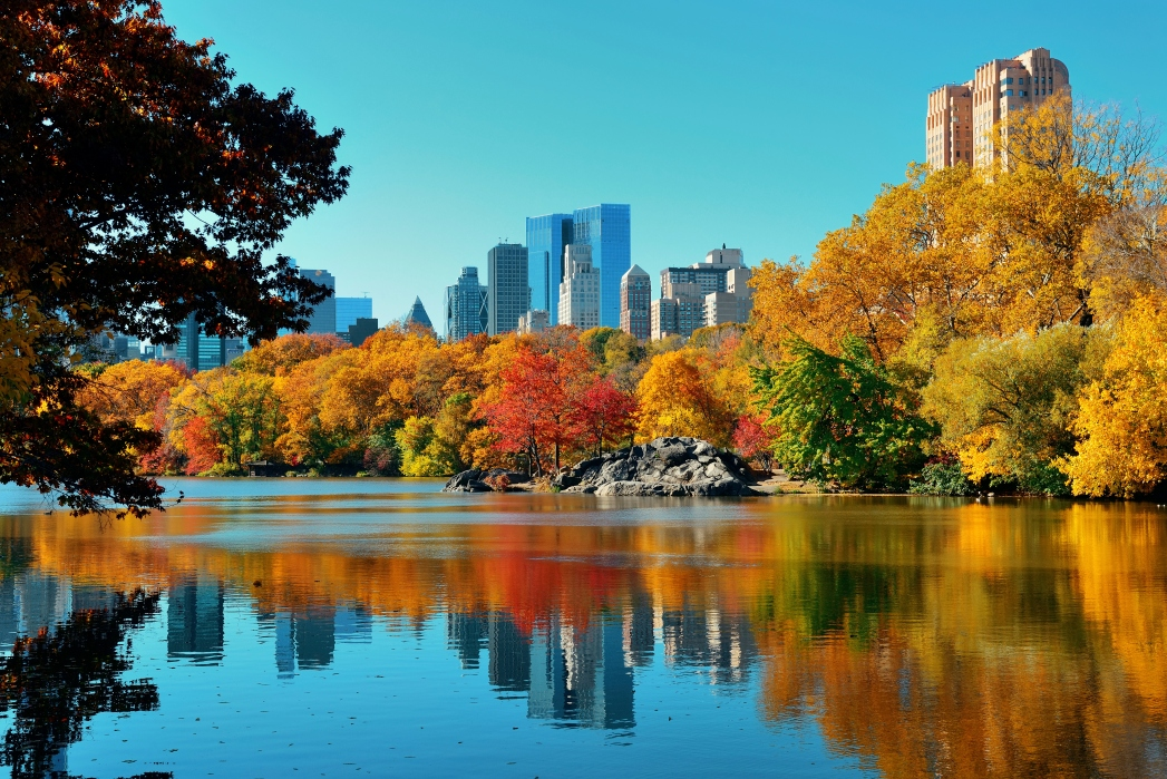 Indian Summer in the City: New York