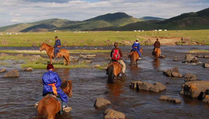 Steppenpferde Mongolei