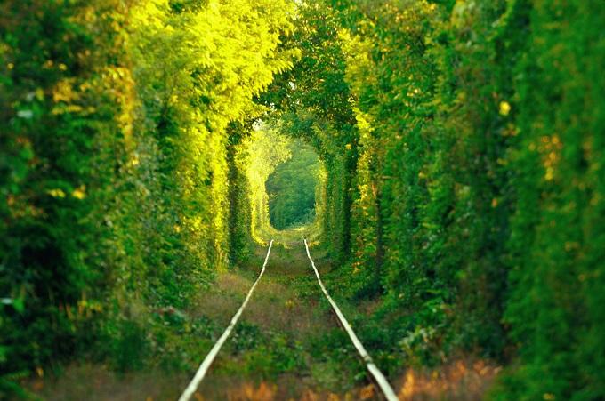 Außergewöhnlich schöne Urlaubsorte: Tunnel der Liebe, Klevan, Ukraine